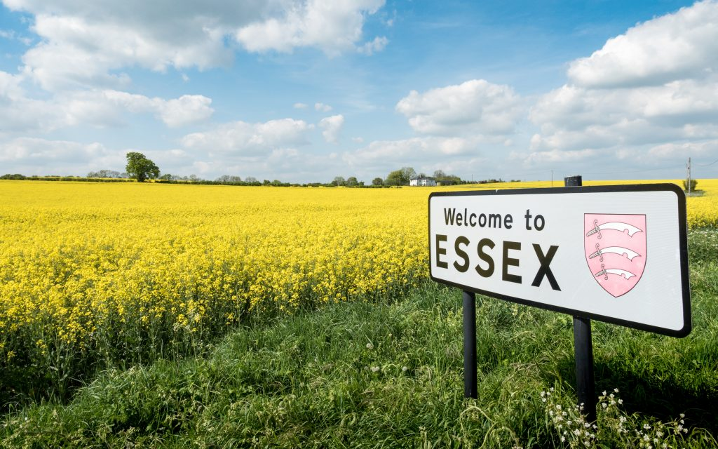 "An image of a bright yellow rapeseed field, with blue skies overhead and a sign saying ""Welcome to Essex"". This ties in with the fostering we offer in Essex"